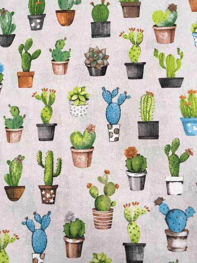 за маса Сахара сиво кактуси